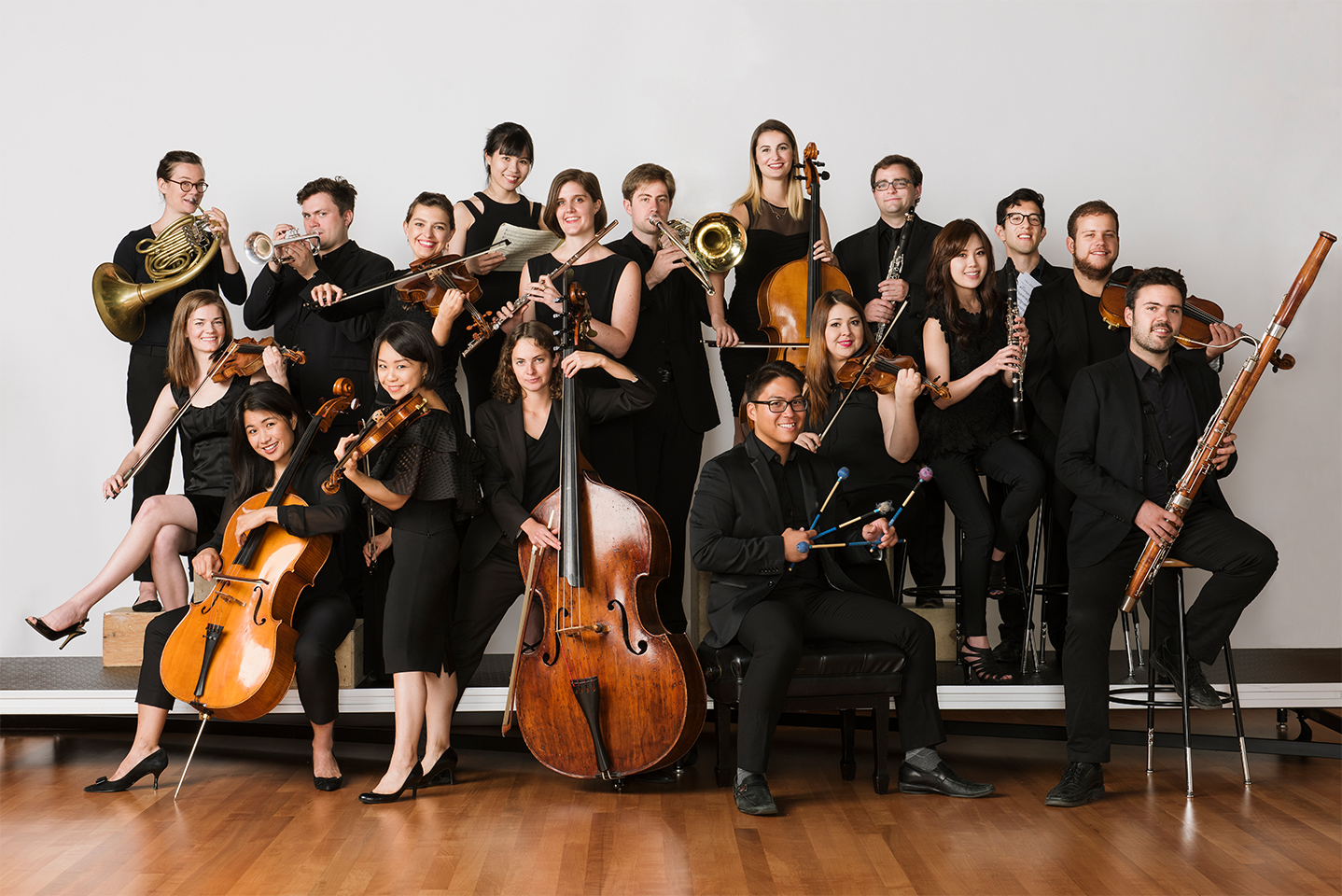 carnegie halls ensemble connect portrait 2018